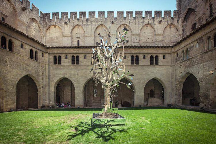 img_foto_szczesny_tree-of-life_2014-08-04_1